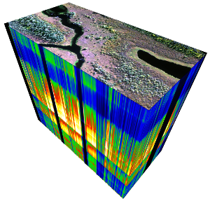 Hypercube generated from a subset of the Yukon Flats study site in Alaska. Image credit: Dr. Marcel Buchhor, HyLab UAF